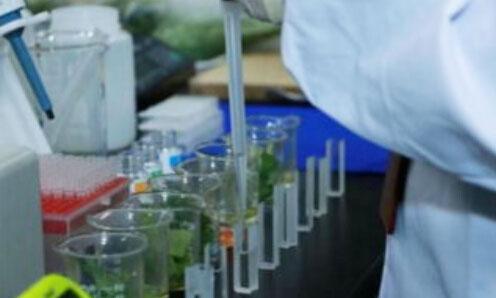 食品检验检测的操作方法