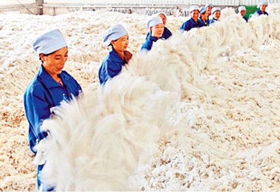羊绒纤维的质量指标